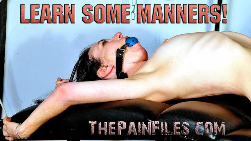 Learn Some Manners Fae Corbin. Thepainfiles 03/12/2014
