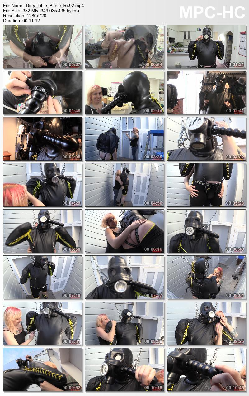 Dirty Little Birdie (R492). Nov 24 2015. Seriousimages.com (332 Mb)