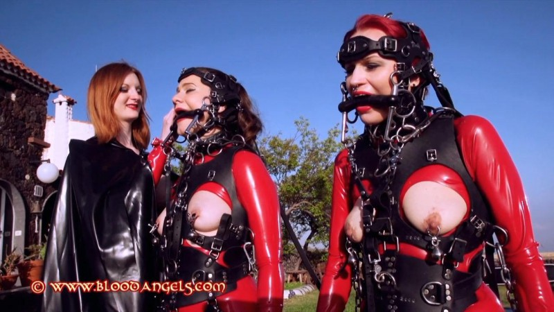 Ponygirls At The Ranch - Zara Durose, Dirty Mary, Tallulah Part Five (Clip 403). Nov 10 2015. Bloodangels.com (333 Mb)