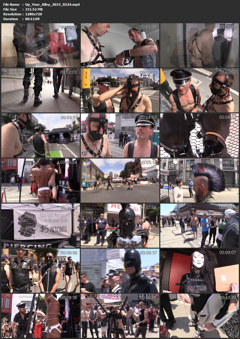 Up Your Alley 2015 - Folsom Street Fair (R524). Sep 29 2015. Seriousmalebondage.com (331Mb)