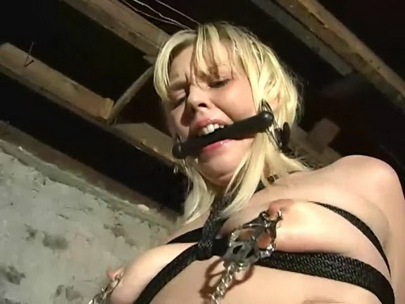 The Bitch is Back – Deirdre. BackDoorBondage.com (444 Mb)
