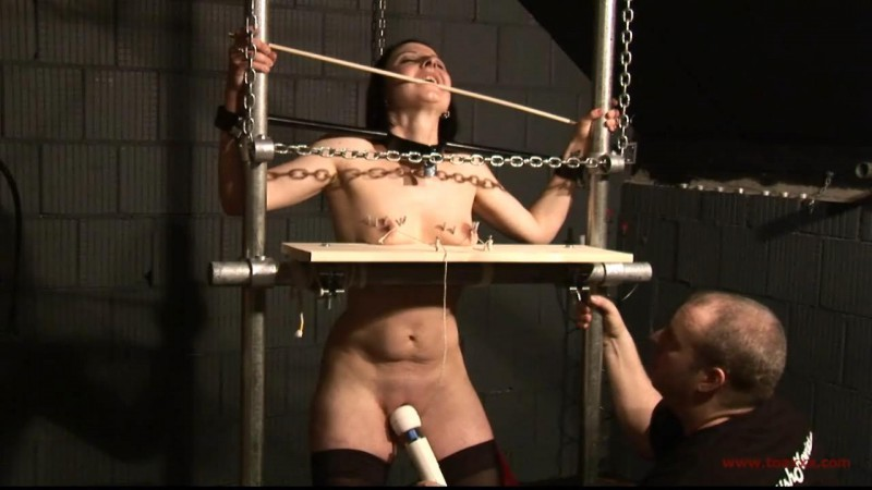 Slave Cat in the Dungeon (TX133). Jun 03 2015. Toaxxx.com (452 Mb)