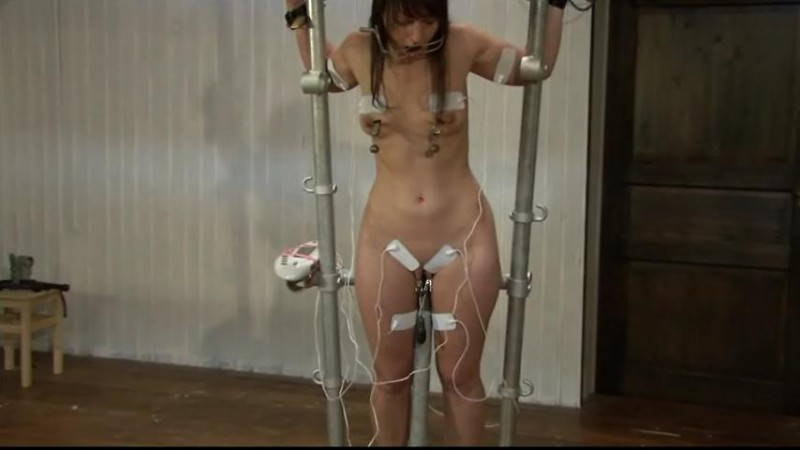 Steel Suspension for Yvette Costeau (TX065). Aug 16 2014. Toaxxx.com (196 Mb)