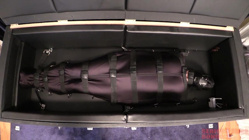 Darlex bondage sleep sack