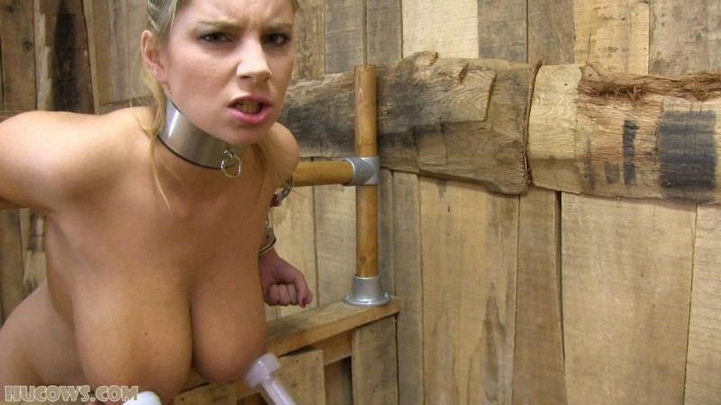 Katarina – huge nipples (hu138). Aug 19 2017. HuCows.com (760 Mb)