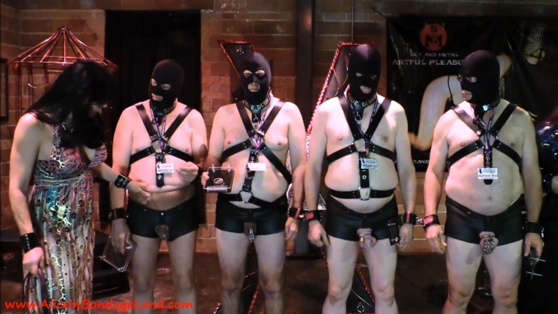 Cbt Contest – Cock And Ball Crushing At True Desires 7. Apr 25 2016. AliceInBondageLand.com (1908 Mb)