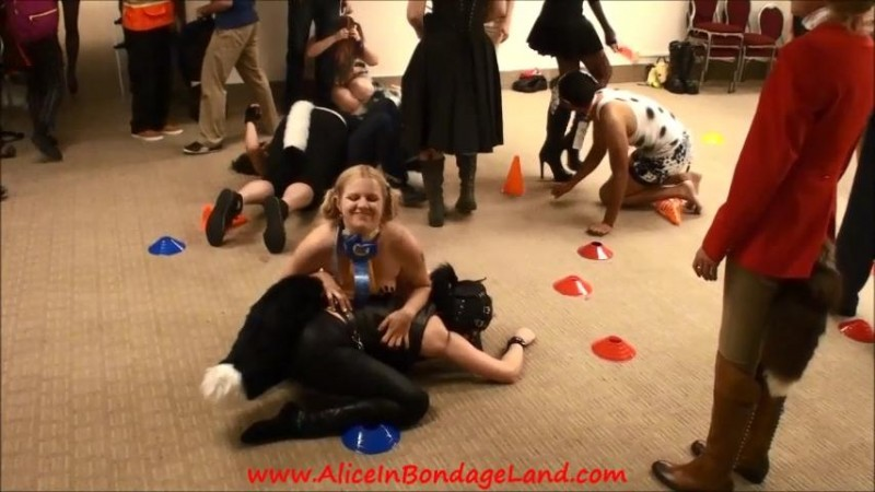 DomCon 2014 Pet Pony Awards Competition Pageant. Nov 21 2014. AliceInBondageLand.com (793 Mb)