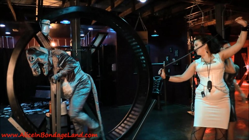 Hamster Wheel From Hell – Femdom Pet Play Sadistic Humiliation. May 20 2016. AliceInBondageLand.com (690 Mb)