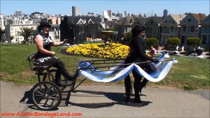 Public Pony Play In The Park – Femdom Bdsm Alamo Square. Jan 12 2015. AliceInBondageLand.com (1109 Mb)