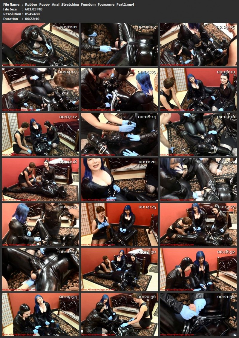 Rubber Puppy Anal Stretching Femdom Foursome. Oct 31 2016. AliceInBondageLand.com (1180 Mb)