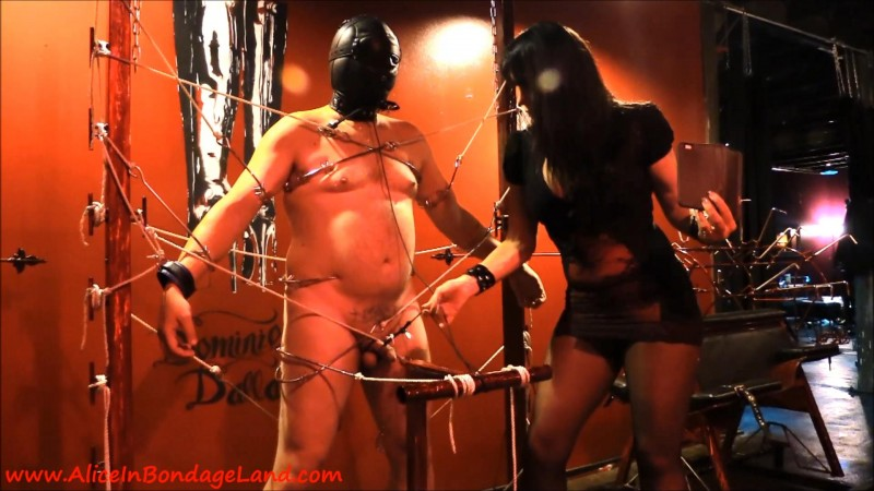 The Metal Bondage Gate – Cameraguy Takedown Femdom Foursome. Apr 11 2016. AliceInBondageLand.com (962 Mb)