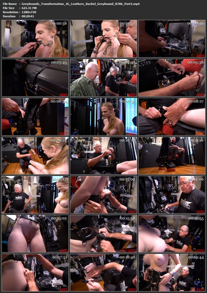 Greyhound's Transformation – JG-Leathers, Rachel Greyhound (R786). Nov 26 2017. Seriousimages.com (1532 Mb)