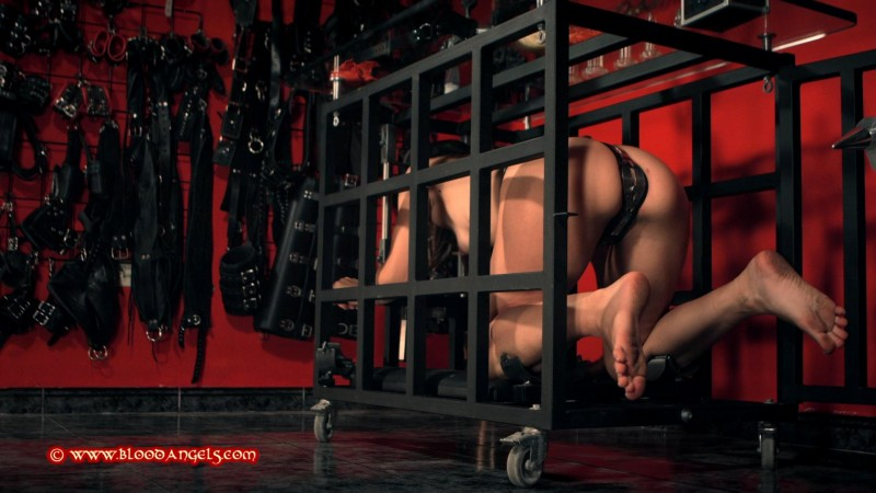 The Cleaning Slavegirl – Mistress Minerva and Valentina Bianco Part Three (Clip493). Oct 28 2017. Bloodangels.com (637 Mb)