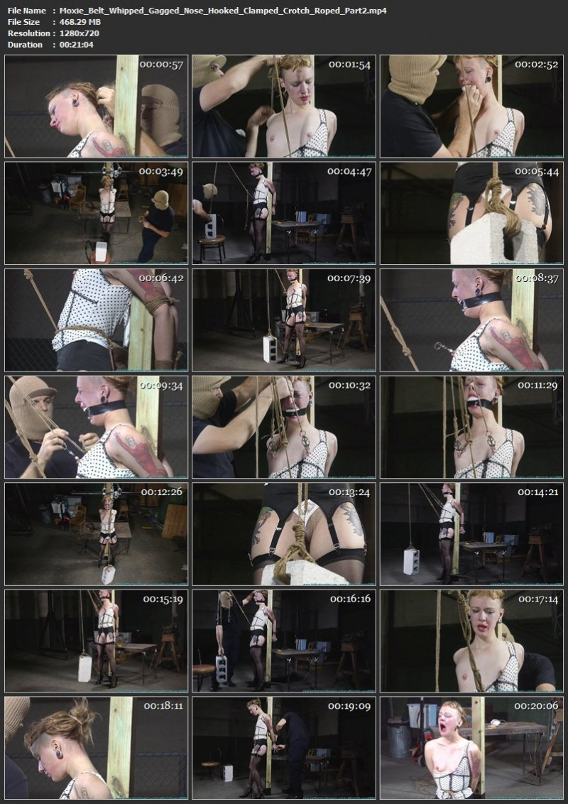 Moxie Belt Whipped, Gagged, Nose Hooked, Clamped, Crotch Roped. Futilestruggles.com (981 Mb)