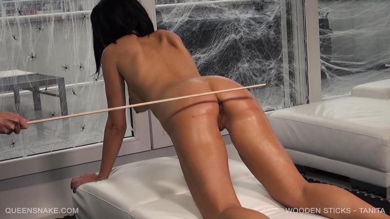 Wooden Sticks – Tanita. Nov 18 2017. Queensnake.com (2149 Mb)