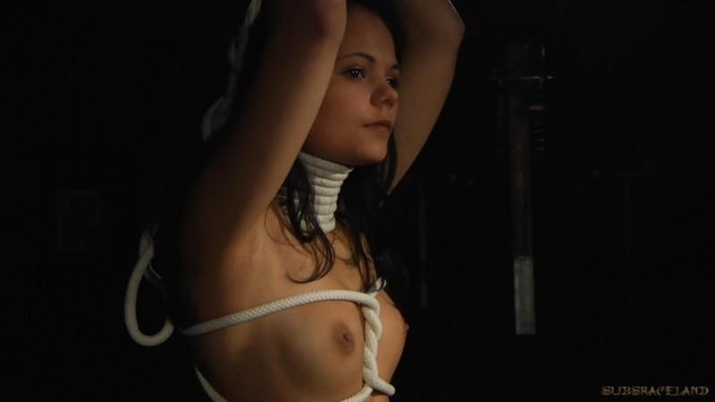 Fate of a Slave – Allodia. SubSpaceLand.com (931 Mb)