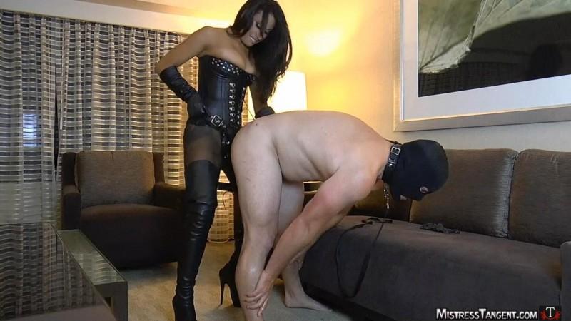 Hotel Humping – Mistress Tangent. Mistresstangent.com (416 Mb)