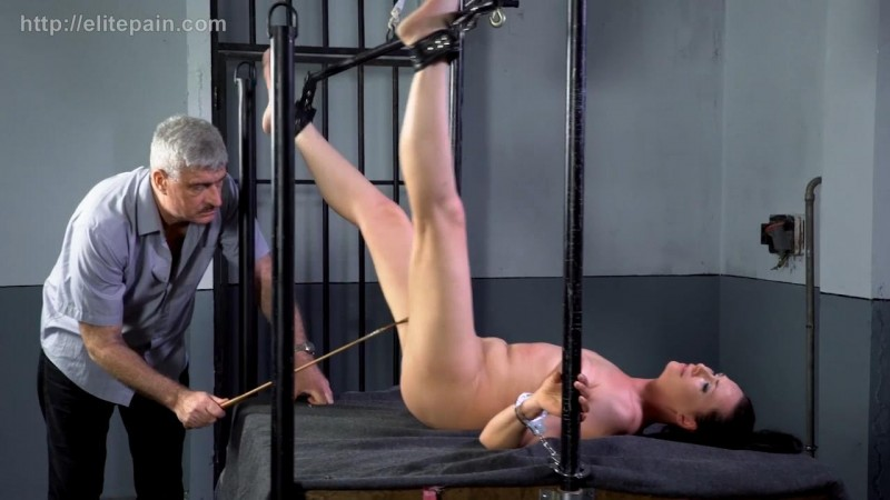 Wheel of Pain 16 – Vicky. Elitepain.com (1404 Mb)