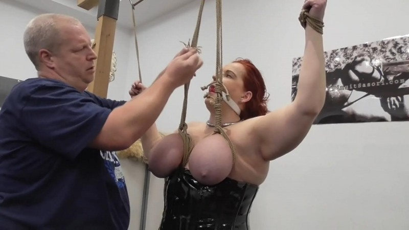 Public Breast Suspension for Kitty the Cat (bip060). Dec 30 2017. Breastsinpain.com (492 Mb)