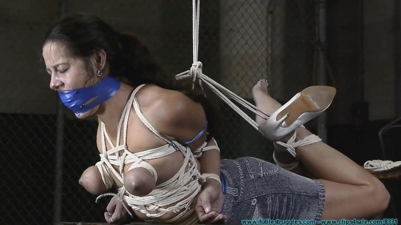 Crossed Elbows Hogtie for Summer. Futilestruggles.com (1315 Mb)