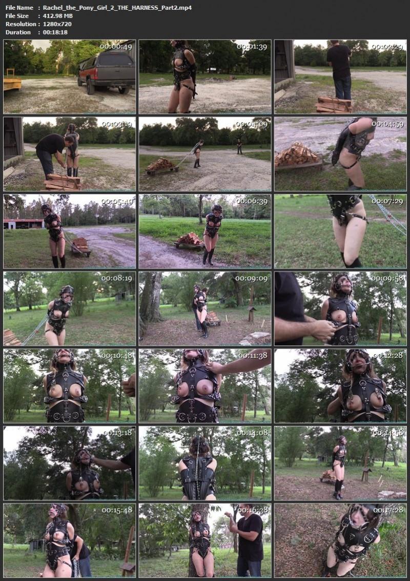 Rachel the Pony Girl 2 – THE HARNESS. Futilestruggles.com (1130 Mb)