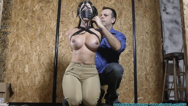 Taylor Plus Leather Equals Fun. Futilestruggles.com (1604 Mb)