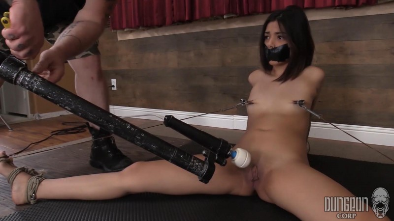 Tiny, Cute and Helpless – Harmony Wonder. Dungeoncorp.com (1187 Mb)