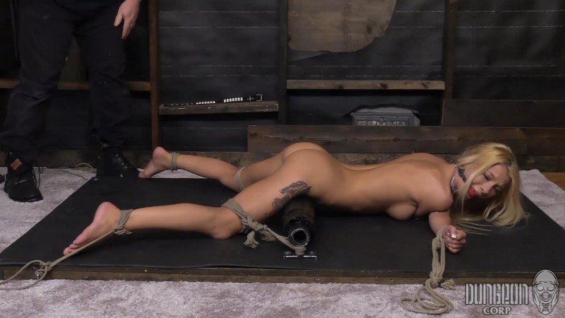 A Fine Piece of Bound Meat – Kenzie Reeves. Dungeoncorp.com (809 Mb)