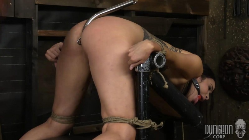 Submitting to His Command – Eden Sinclair. Dungeoncorp.com (1259 Mb)