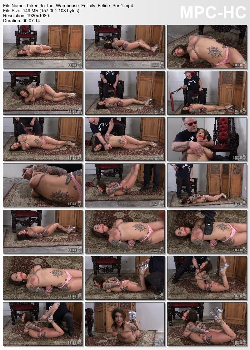 Taken to the Warehouse – Felicity Feline. Dungeoncorp.com (720 Mb)