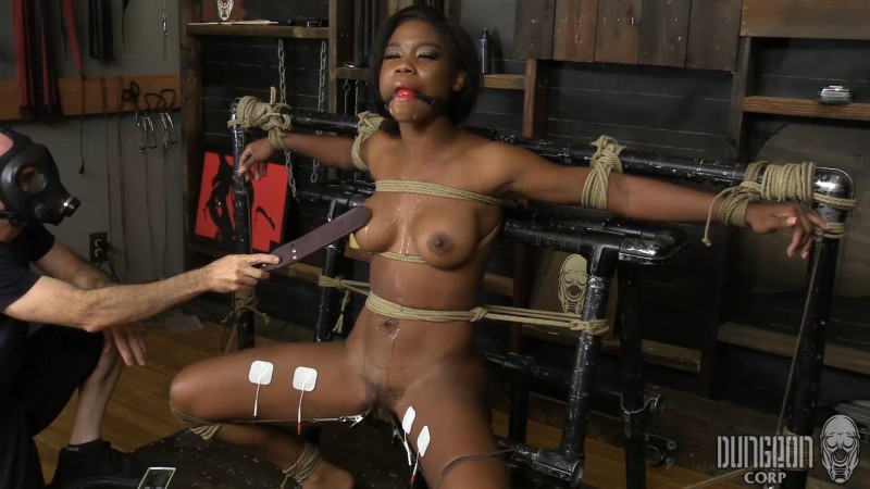 The Newbie Toy – Mya Mays. Dungeoncorp.com (1045 Mb)