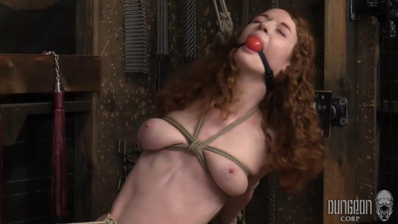 Uber Submissive – Abby Rains. Dungeoncorp.com (788 Mb)