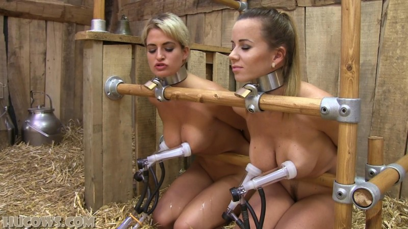 Cindy and Nicole – double goat milker session (hu191). Aug 25 2018. HuCows.com (816 Mb)