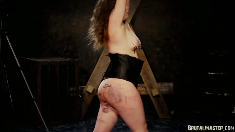 Bullwhipped Bitch – Missy. 30 May 2018. BrutalMaster.com (144 Mb)