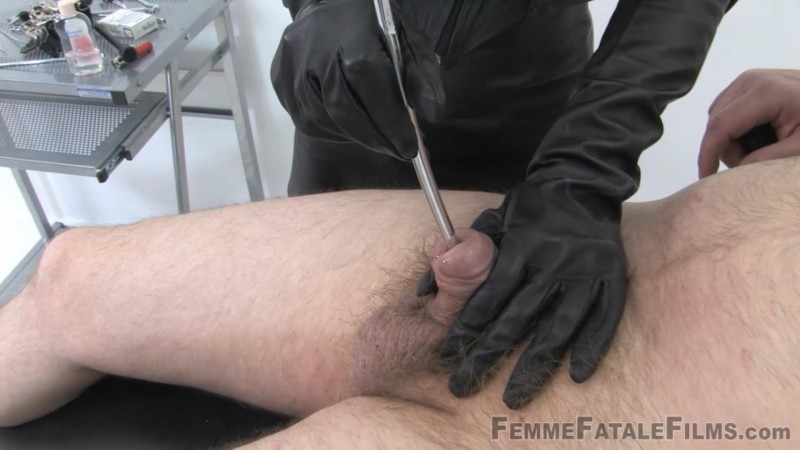 The Confession 1 – Featuring Mistress Vixen. 13 Apr 2019. Femmefatalefilms.com (1529 Mb)
