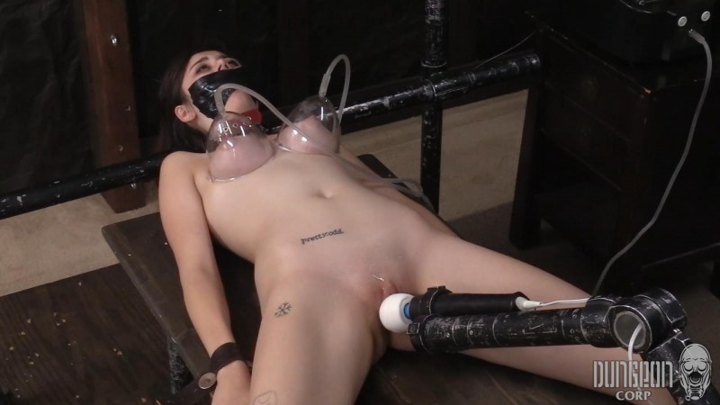 Another One Bites the Gag – Becca Pierce. Dungeoncorp.com (1292 Mb)