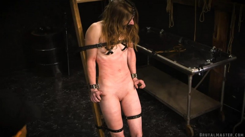 Climbing The Ladder of Pain – Kitty. 04 Jun 2019. BrutalMaster.com (360 Mb)