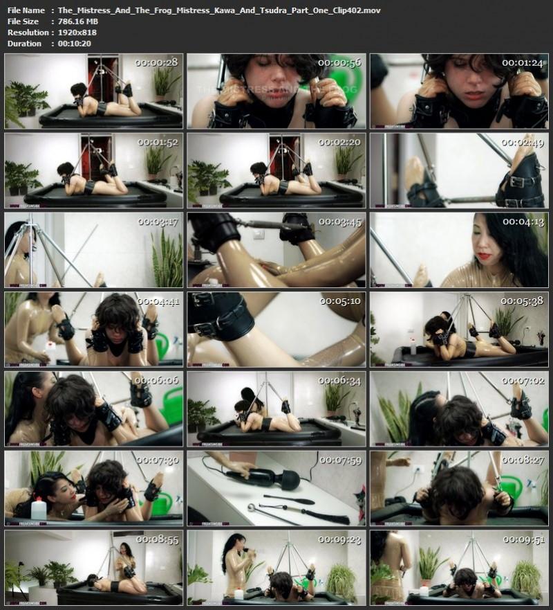 The Mistress And The Frog – Mistress Kawa And Tsudra Part One (Clip402). Jun 12 2019. Freaksinside.com (786 Mb)