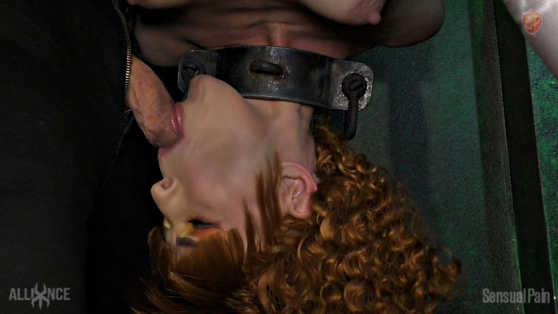 Acquired Redhead Daily Painful Dressage - Abigail Dupree. May 19 2019. Sensualpain.com (1355 Mb)