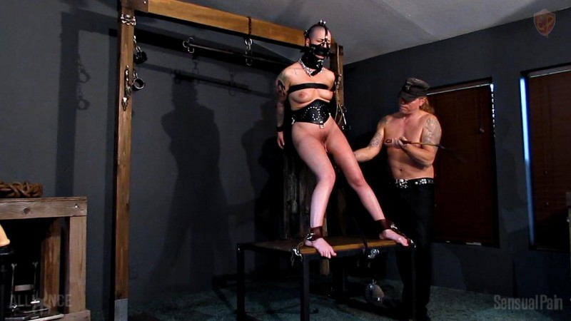 Pain at the Pylon - Abigail Dupree. Nov 06 2019. Sensualpain.com (544 Mb)