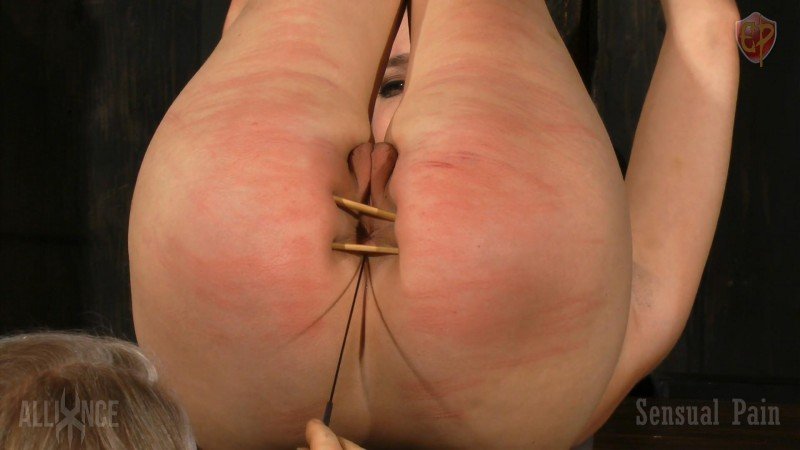 Painful Service - Abigail Dupree. Feb 04 2018. Sensualpain.com (1737 Mb)