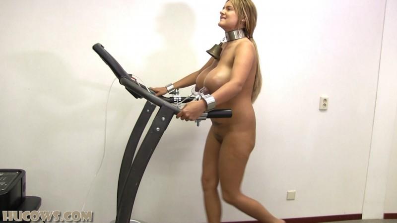 Katie – nipple training on the treadmill (hu213). Jan 26 2019. HuCows.com (930 Mb)