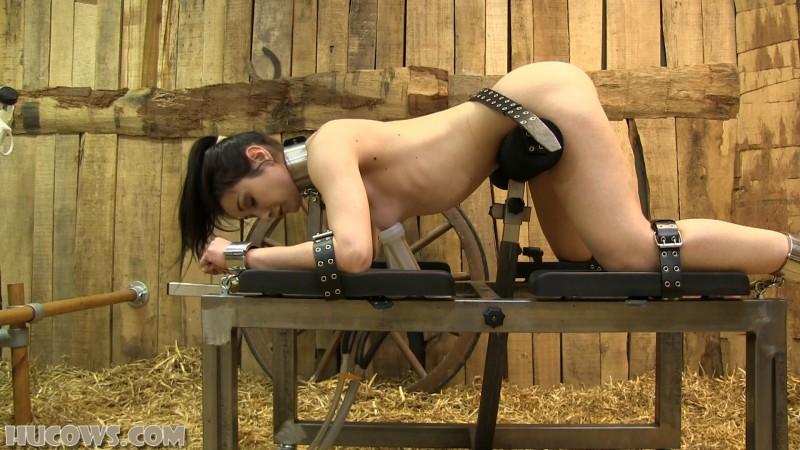 Valentina Bianco – jewel butt plug (hu224). Apr 13 2019. HuCows.com (951 Mb)