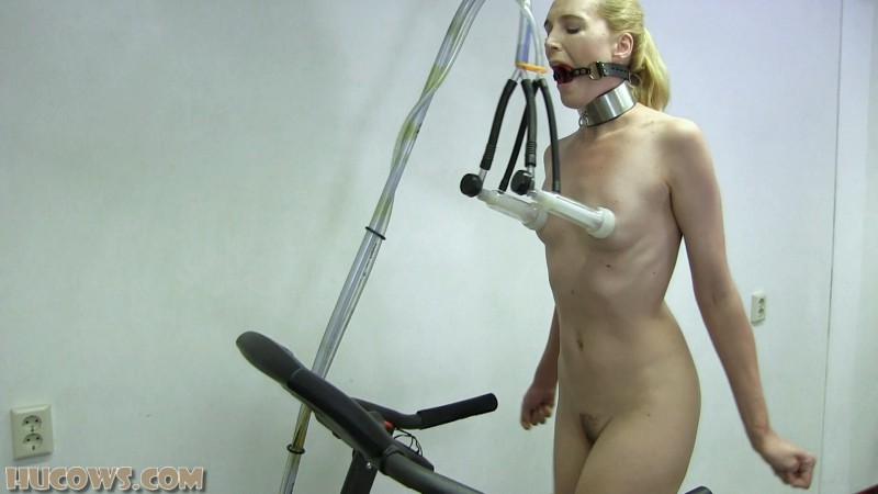 Ariel Anderssen on the treadmill (hu251). Oct 19 2019. HuCows.com (1019 Mb)