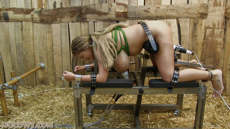 Katie – milked and vibrated (hu257). Nov 30 2019. HuCows.com (814 Mb)