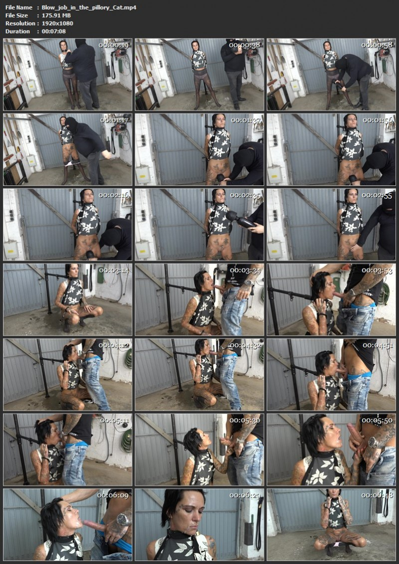 Blow job in the pillory – Cat. 2019-10-08. Amateure-Xtreme.com (145 Mb)