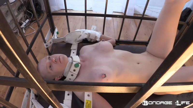 Cage Time (Pee Edition) - Rachel Greyhound. 9/16/2019. Bondagelife.com (422 Mb)
