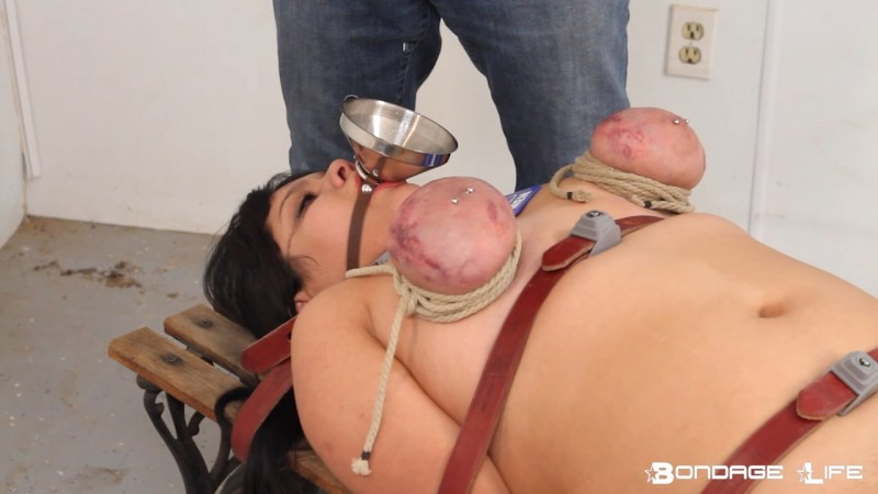 Urinal Bitch (BrutalMaster Edition) - Rachel Greyhound, Whisper Thorn, Lita Lecherous. 12/21/2019. Bondagelife.com (440 Mb)