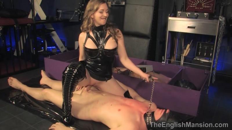 The Cuck Box - Mistress T. Theenglishmansion.com (279 Mb)