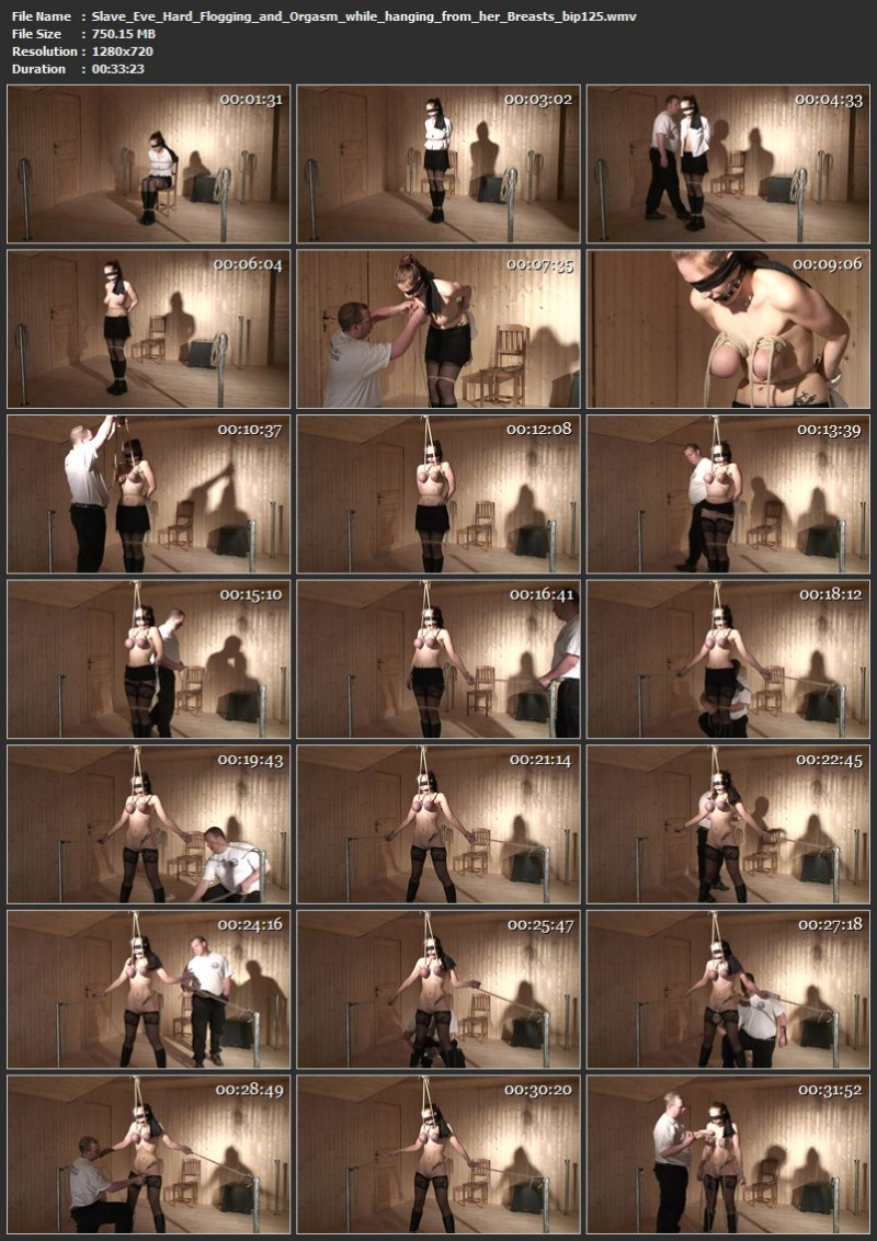 Slave Eve - Hard Flogging and Orgasm while hanging from her Breasts (bip125). Mar 30 2019. Breastsinpain.com (750 Mb)